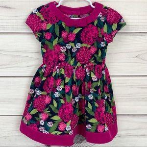 Gymboree PLUM PONY Fall Floral Corduroy Dress 2T